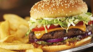 red-robin-burger-gourmet-cheeseburger, Red Robin Survey